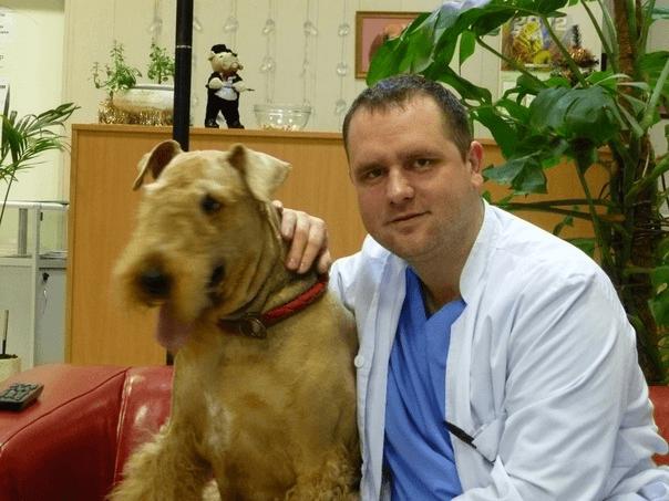 Ветеринар-терапевт и дерматолог в районе Фили-Давыдково города Москвы - Юрасов Александр Валерьевич