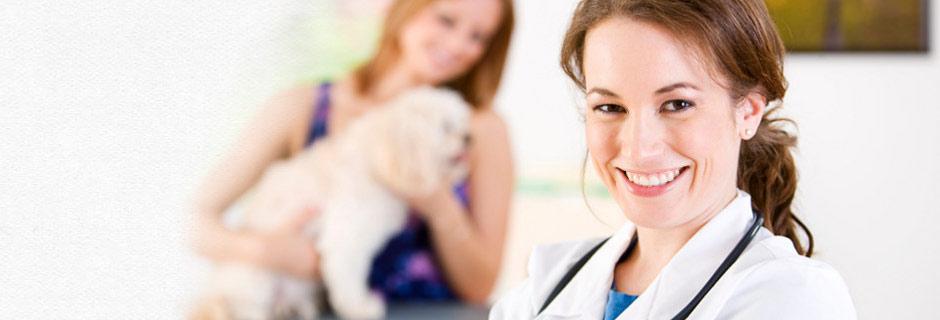 Ветеринарная помощь на дому и в ветеринарной клинике Мос-Вет 24 - Хорошевский